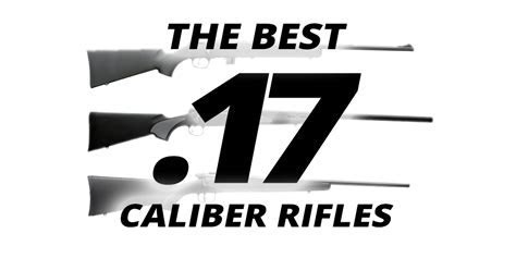 The Best .17 Caliber Rifles Available Today   RifleShooter