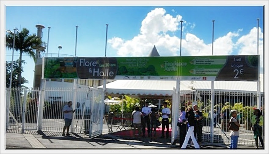 - FLORÉAL AU PORT 1/7 (Réunion)