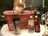 ねおとカゴと安ワイン