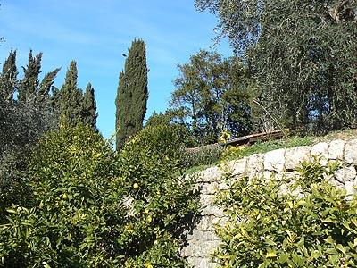 jardin de la bastide.jpg