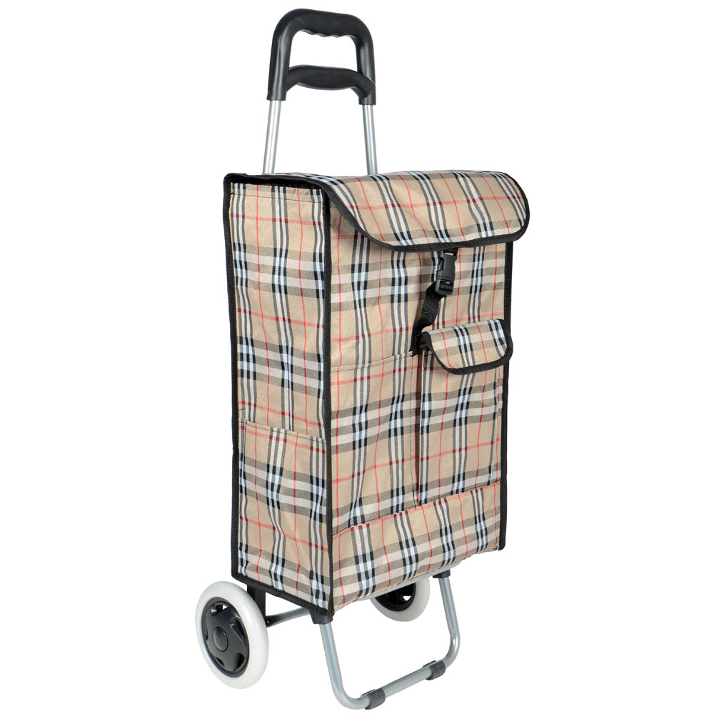 Image result for old woman shopping trolley