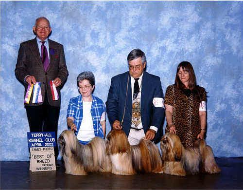 Lhasa Apso family website