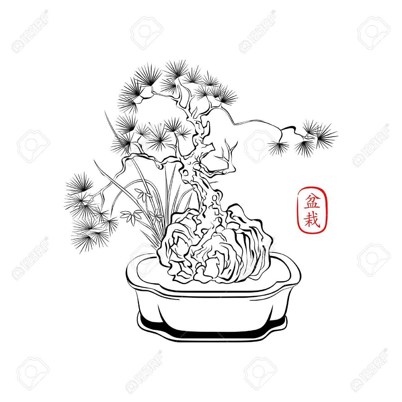 How To Draw A Bonsai Tree Step By Step Bonsai Tree