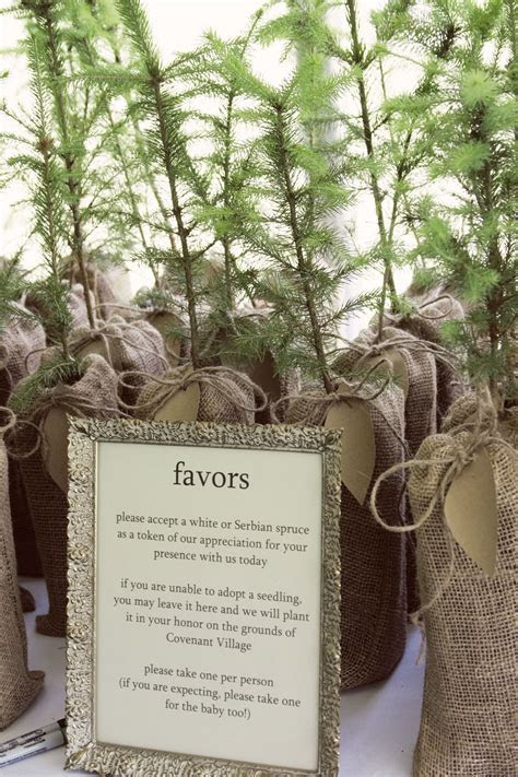 plant a tree wedding party favors mmmm order from the