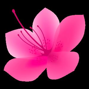 サツキの花1 花植物イラスト Flode Illustration フロデイラスト