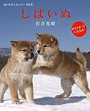 2011年卓上カレンダー しばいぬ (2011年カレンダー)