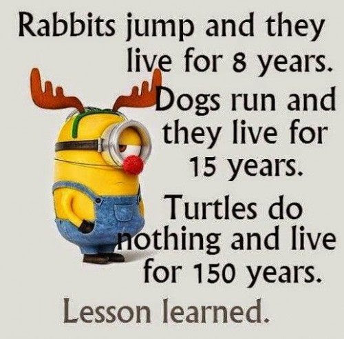 Top 30 Funny Minion Quotes Funny Minions Memes