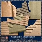 Cardboard Box Torn Pieces 1 CU -TS