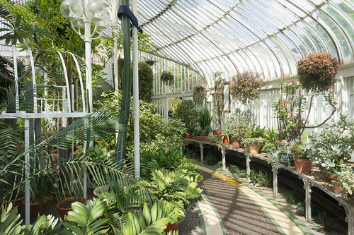 A Visit To The Belfast Botanic Gardens by infomatique