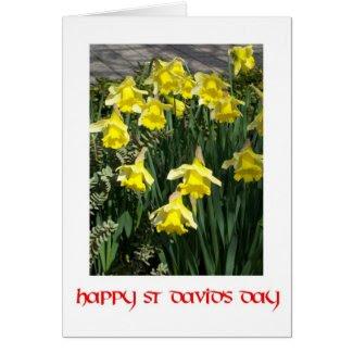 St David's Day Daffodils Greeting Card
