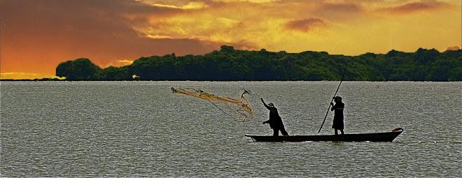 pescando camaron