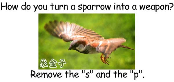 sparrow arrow 麻雀 箭