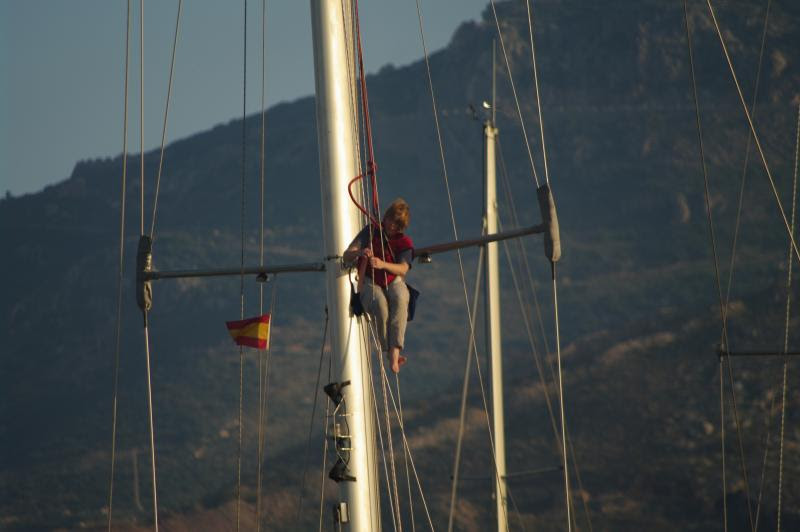 Wild Tigris - Anne up the mast