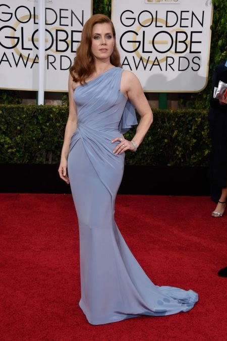 "Always a red carpet ""best dressed"" - Amy Adams didn't disappoint. Her steely-grey-blue Versace gown was a movie-star worthy look for the nig"