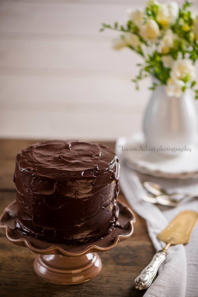 MUD CAKE-1563-2