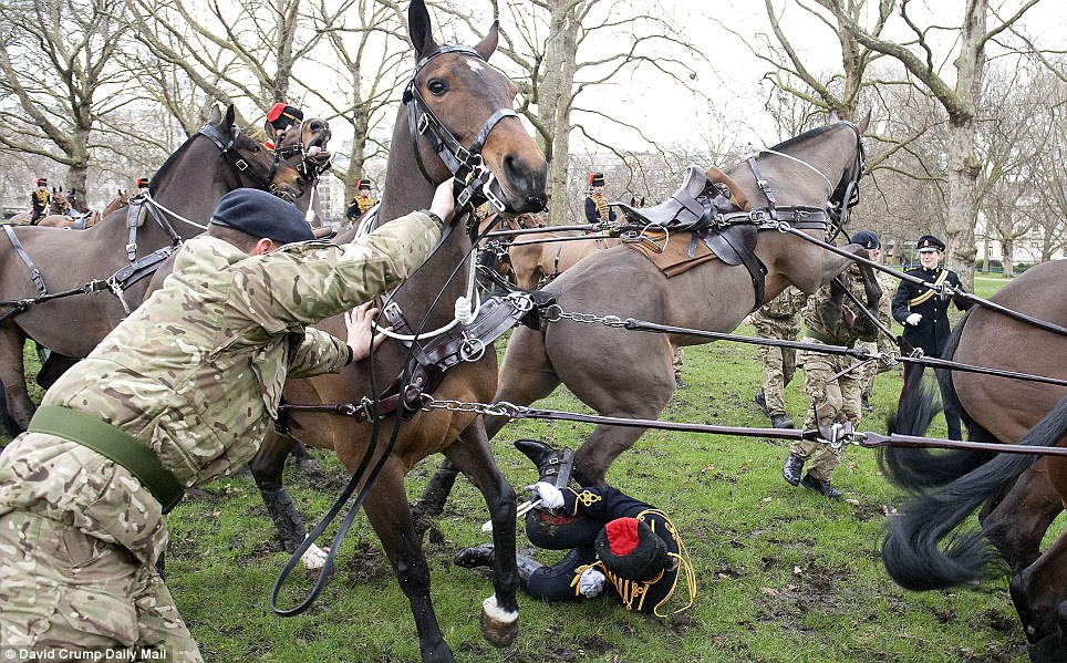 Evasion: The trooper rolls away from the thrashing animal's hooves