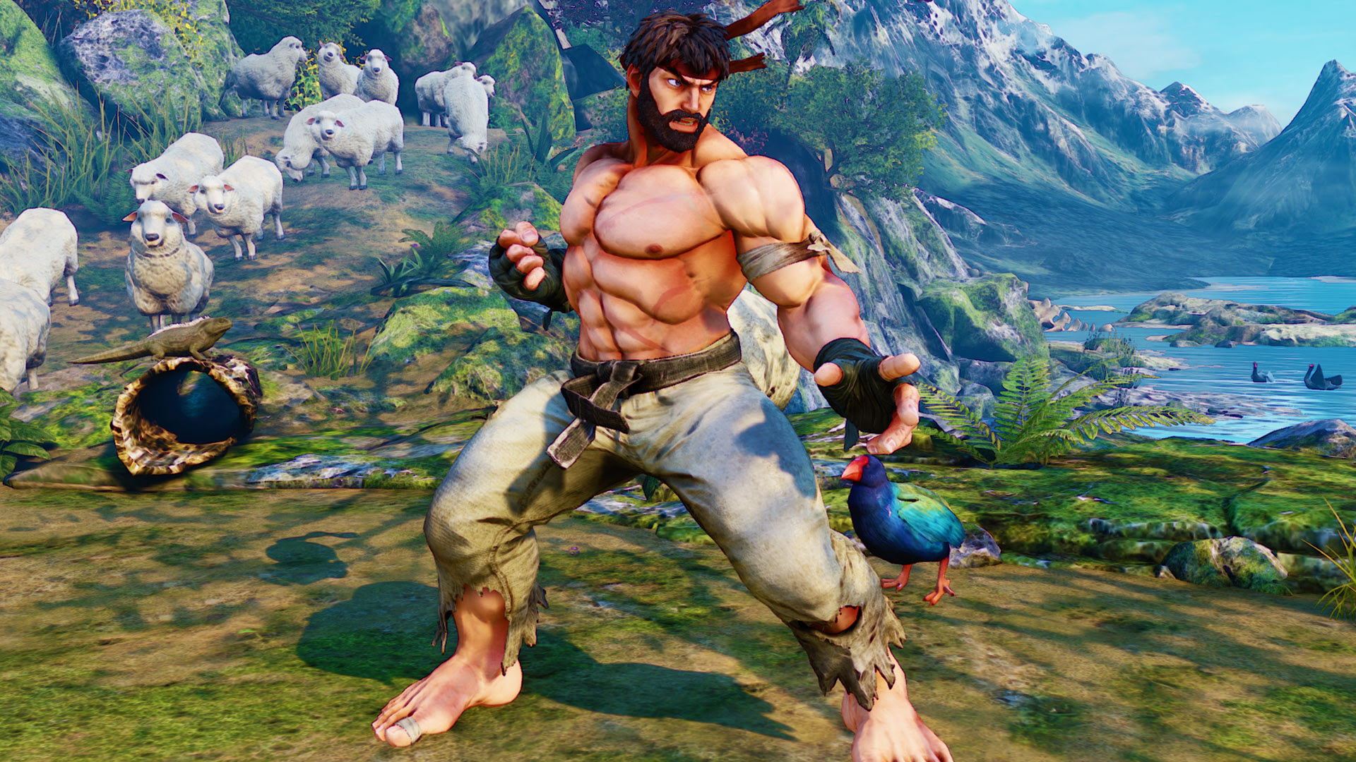 Street Fighter 5 Collector S Edition And Preorder Bonuses Detailed