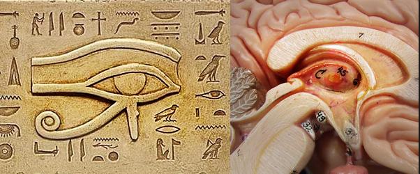 Ojo De Horus Significado Satanico