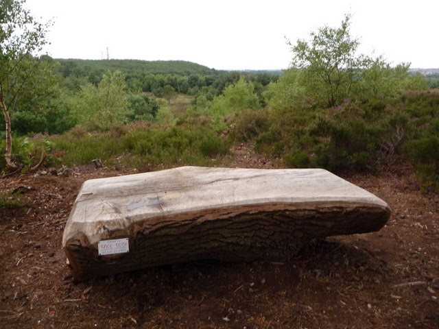File:Christchurch, tree-trunk bench on Blackwater Hill - geograph