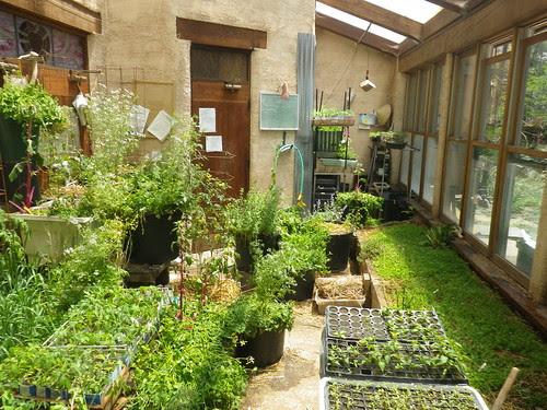 main green house