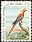 Cuban Macaw Ara tricolor †