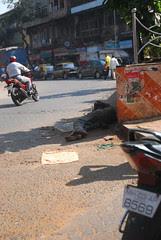 Jab Dil Hi Toot Gaya Ham Peekar Kya Karenge by firoze shakir photographerno1
