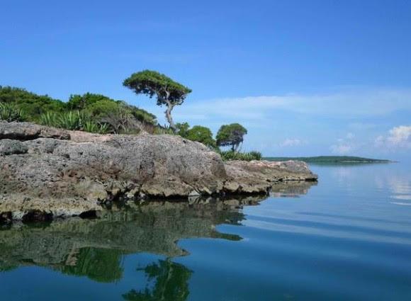Punta noreste  de Cayo Ají Chico, uno de los que conforman los Cayos de Piedra, formación única de su tipo en el país, ubicada en la Bahía de Buenavista, en la porción correspondiente al Parque Nacional Caguanes, en Sancti Spíritus, Cuba, el 19 de octubre de 2014.    AIN FOTO/Oscar ALFONSO SOSA/