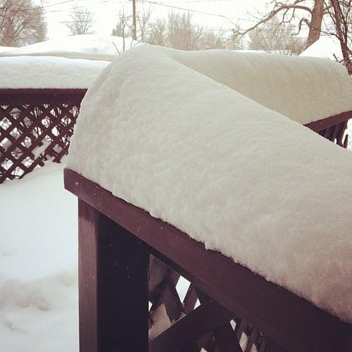 Day106 still snowing! #jessie365 4.17.13