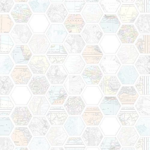 JPEG_Map_hexagon_LIGHT_12_and_a_half_inch_350dpi_melstampz