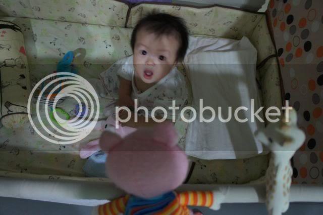 photo 24_zps24743a2f.jpg