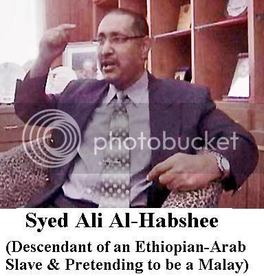 syed ali al-habshee