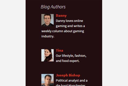 Authors list widget