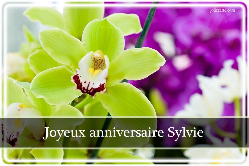 Carte Joyeux Anniversaire Sylvie Wizzyloremaria Official