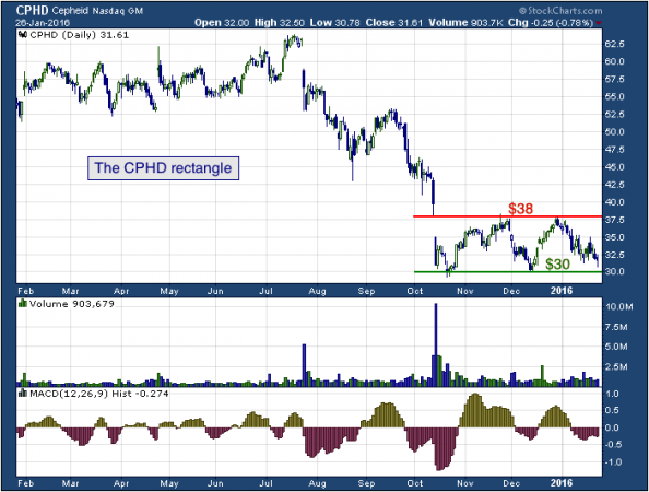 1-year chart of Cepheid (NASDAQ: CPHD)
