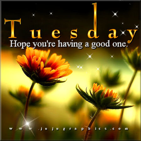 Unique Good Night Tuesday Images - HD Greetings Image