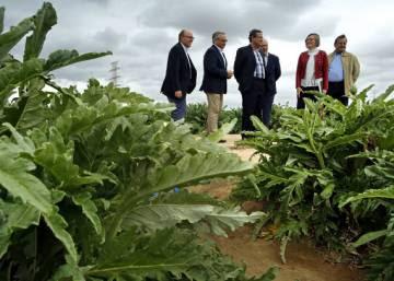 La Comunidad Valenciana impedirá a los municipios crecer sobre la huerta