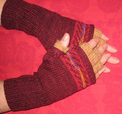 glove covers1a