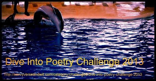 Dive Into Poetry Challenge 2013