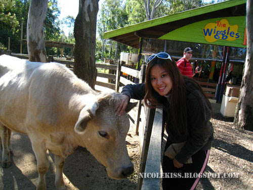 cow and me