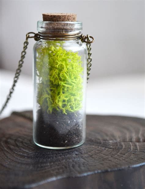 MOSS Necklace, Large Moss Necklace, Nature Lover, Vial