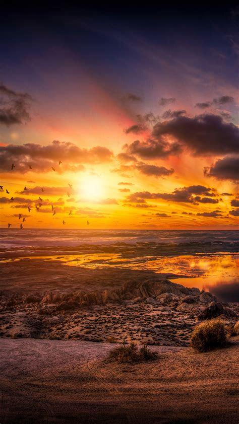 wallpaper sunset birds clouds hd  nature