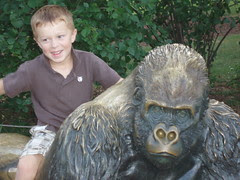 Kyler and the ape