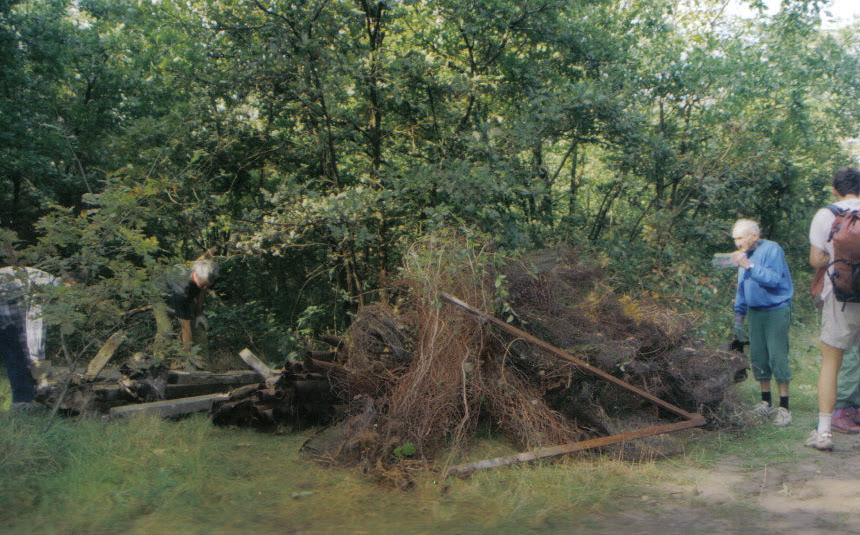 clean up day 2001