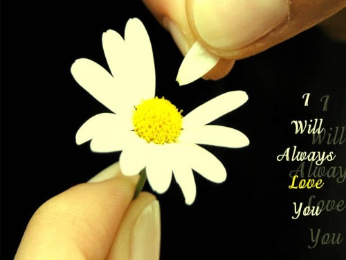 short-sad-love-quotes-e1351437041345 | Like to banta hai ...