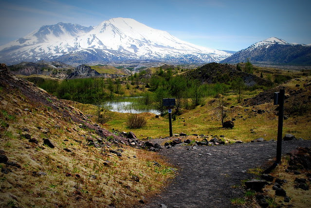 Mt St Helens from the junction of the Hummocks and Boundary trails