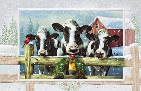 Cow Christmas