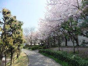 今池親水公園02.JPG