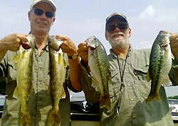 The bass and walleye are biting at Lake Broken Bow