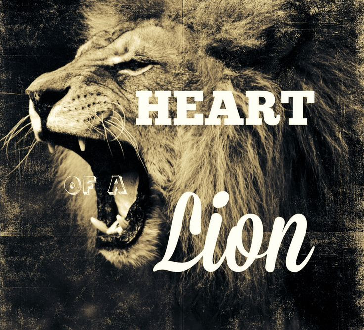 Quotes About Lions Heart 20 Quotes