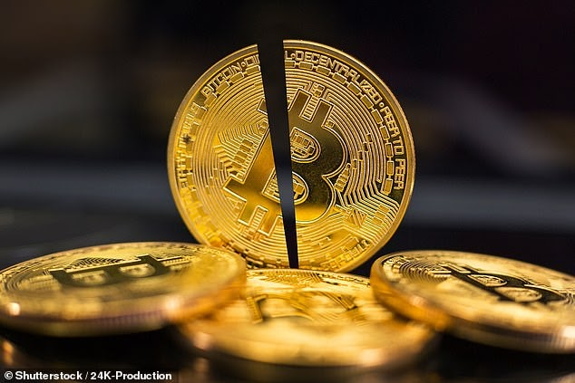 $200 BILLION wiped off cryptocurrency <bold>market</bold> in 24 hours as bitcoin <bold>value</bold> plunges by 22% - but experts say it's a much-needed reset to avoid 'the mother of all bubbles'   Women System